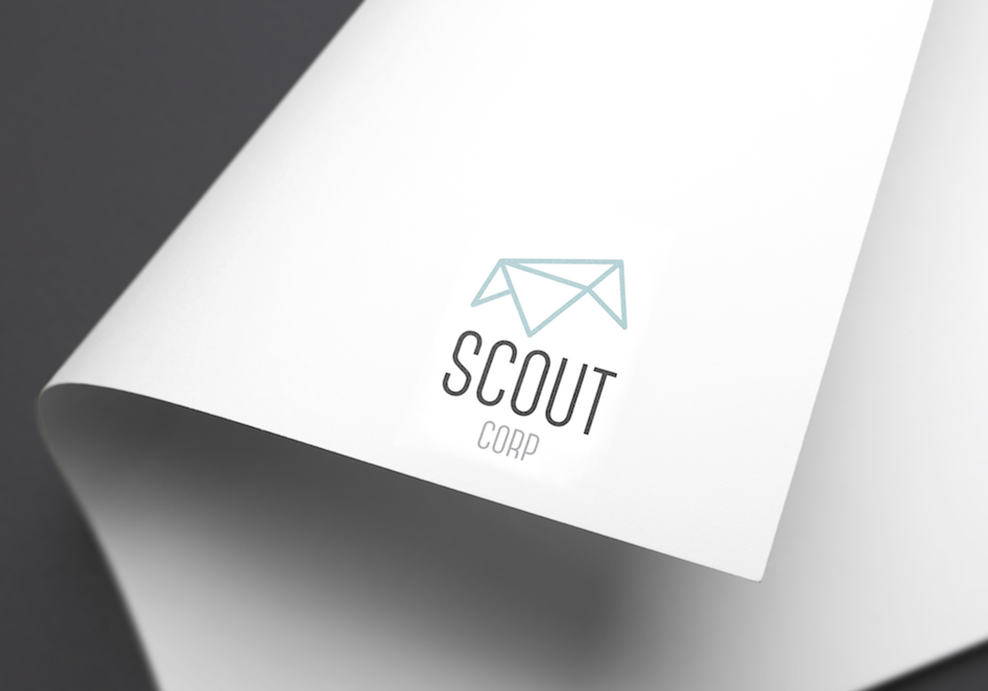 Scout Corp Property Management Was Looking For A Fresh New Logo To Launch Their Business With The Is Based On An Origami House And Developed Using